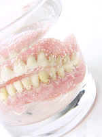 Dental Denture in Alton